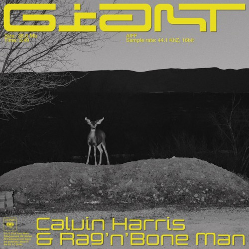 CALVIN HARRIS & RAG`N`BONE MAN: Giant