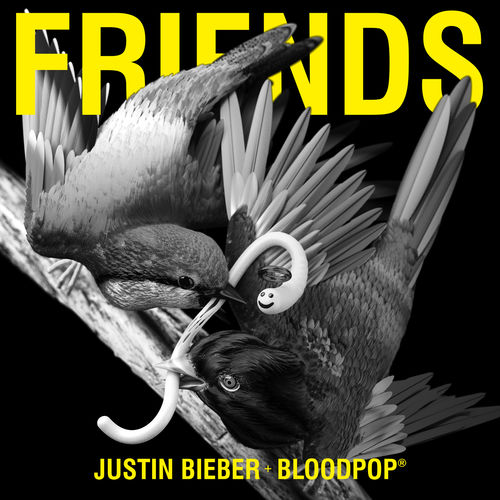 JUSTIN BIEBER & BLOODPOP: Friends