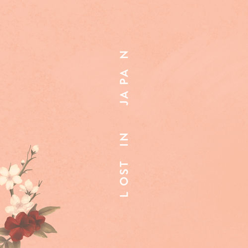 SHAWN MENDES: Lost In Japan