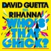 DAVID GUETTA feat. RIHANNA: Who`s That Chick