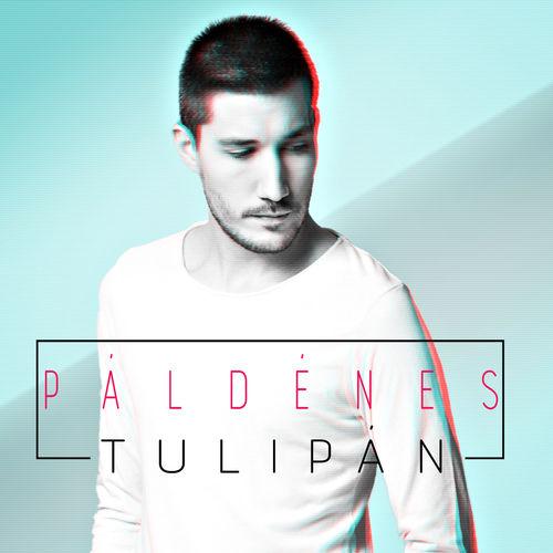 PÁL DÉNES: Tulipán